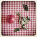 clafoutis  pommes et basilic