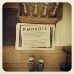 Pimpinelle